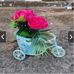 Tanaman Hias Bunga Sepeda Ontel Dekorasi Ruangan Bunga Sepeda Keranjan