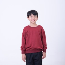 Hoodieku Kids Sweater Earth Collectible Apple Red Laki-Laki