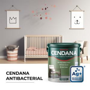 Cendana Antibacterial Cat Tembok Interior - 5 Kg