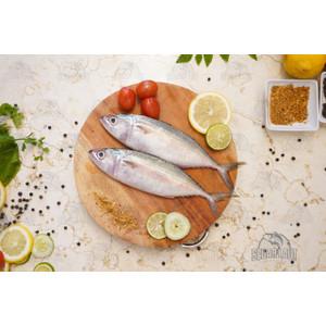 Ikan Kembung Banjar | FRESH