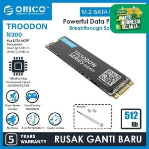 ORICO 512GB SSD M.2 SATA 2280 TROODON SERIES - N300-512GB