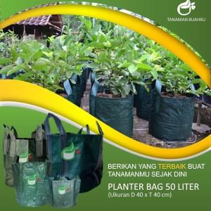 Planter Bag 50 Liter Original Easy Grow Polybag Tambulampot Pot Ukuran