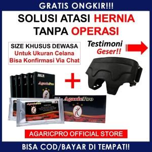 Paket Obat Hernia Dewasa Turun Bero, Tedun Celana & Herbal AgaricPro