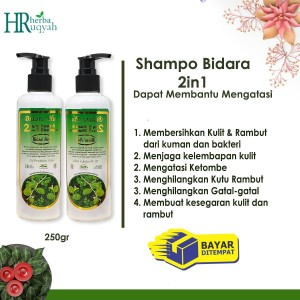 Shampoo Bidara/Bidara