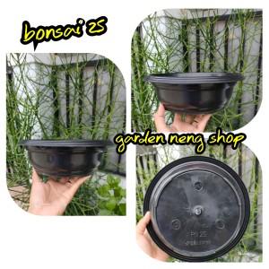 Harga Hairgrass Bahan Tanaman Hias Aquascape Murah Katalog.or.id