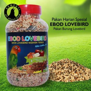 Info Milet Merah 1kg Millet Merah Pakan Burung Lovebird Makanan Burung Katalog.or.id