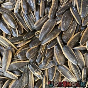 Info Kuaci Hitam Kwaci Hitam Makanan Burung Katalog.or.id