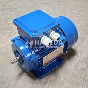 Info Electric Motor 0 25hp 0 25hp 3pase Dinamo Electric Motor Bologna Katalog.or.id
