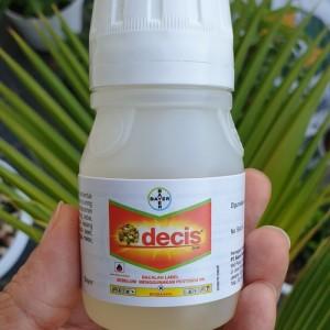 Harga Insektisida Decis 50 Ml Pembasmi Hama Jenis Serangga Katalog.or.id