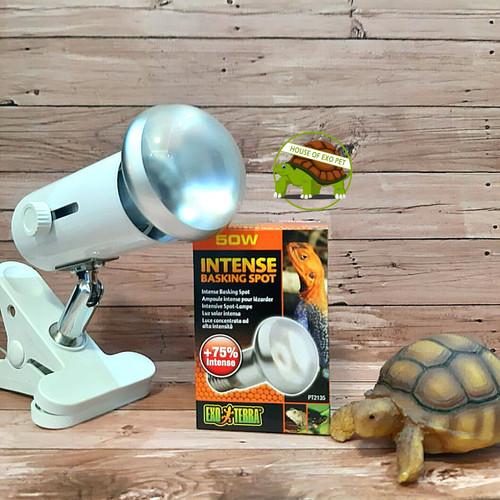 Foto Produk LAMPU UVA DAN FITTING CERAMIC PAKET HEMAT dari House of Exo Pet