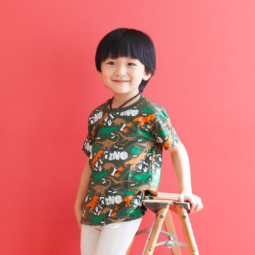 Foto Produk Kaos Anak Usia 1-9 tahun motif dino|L094 Army Dino Tee - Little Jergio - M 2-3Y dari Little Jergio