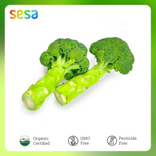 Foto Produk Sayur Brokoli Organik 300 g dari SESA Official