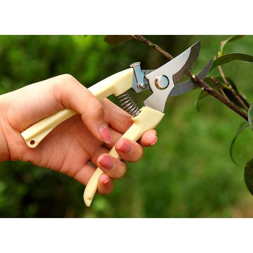 Foto Produk Gunting dahan ranting kebun taman dari rjStores