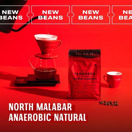 Foto Produk NORTH MALABAR ANAEROBIC NATURAL 100G, BIJI KOPI TANAMERA COFFEE - Whole Beans dari Tanamera Coffee