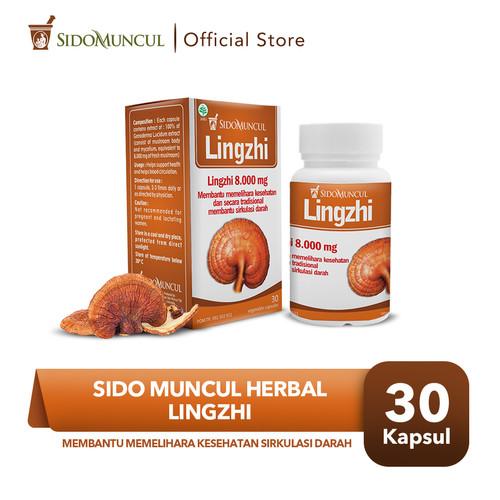 Foto Produk Sido Muncul Herbal Lingzhi 30 Kapsul - Menghambat Sel Tumor Kanker dari Sido Muncul Store