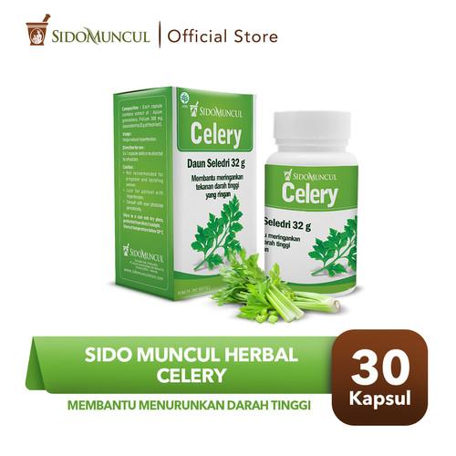 Foto Produk Sido Muncul Herbal Celery 30 Kapsul - Menurunkan Darah Tinggi dari Sido Muncul Store