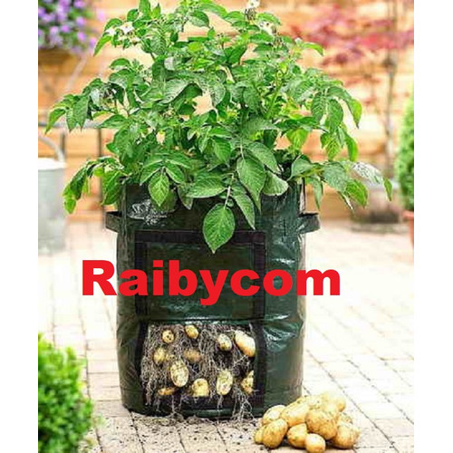 Foto Produk Potato Planter Bag 48 Liter Easy Grow Planterbag Kentang Ubi Jalar dari Raibycom