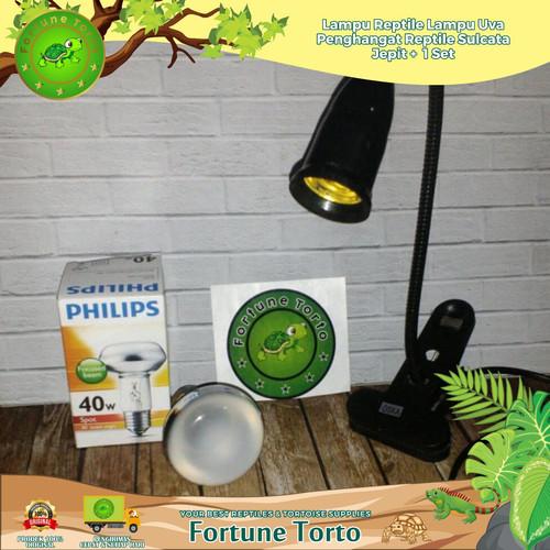Foto Produk Lampu Reptile/Lampu UVA-Penghangat Reptile/Sulcata/Jepit+ 1set dari Fortune Torto