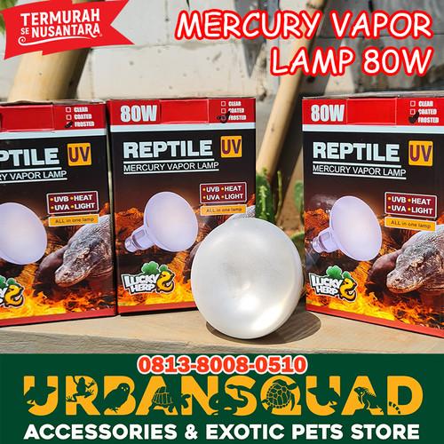 Foto Produk LAMPU UVA UVB MERCURY VAPOR 80W LUCKY HERP TORTO SULCATA ALDABRA KURA dari UrbanSquad Store