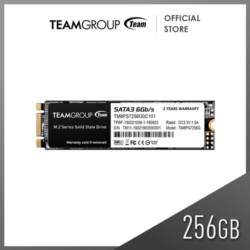 Foto Produk TEAMGROUP SSD M2 2280 MS30 256GB dari Teamgroup Official Store