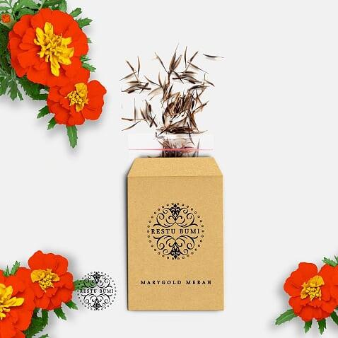 Foto Produk Benih Bunga Merigold Merah - 100 Biji dari RESTU BUMI PERTIWI