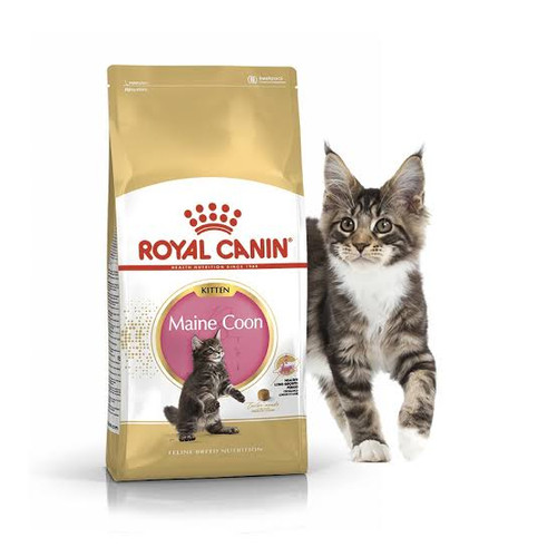 Foto Produk Makanan Kucing / Cat Food ROYAL CANIN MAINE COON KITTEN 400 GRAM dari Sandika Petshop