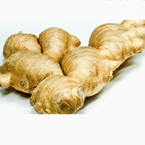 Foto Produk Jahe Putih dari fitri sayur