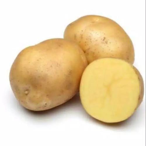 Foto Produk Kentang Dieng/ Kentang Kuning dari Kedai Sayur Kita