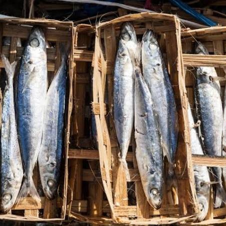 Foto Produk Ikan Pindang / keranjang dari Toko Sayur Dua Dara