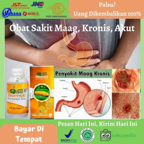 Foto Produk QnC Jelly Gamat - Obat Sakit Maag, Kronis, Akut, GERD, Asam Lambung dari MP Herbal