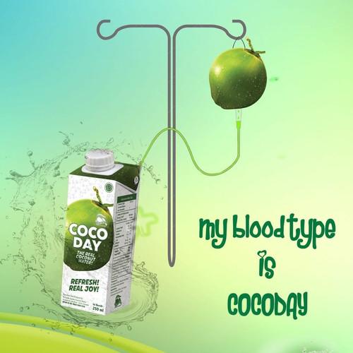 Foto Produk Cocoday air kelapa asli 250 ML X 24 psc dari toko dua putra