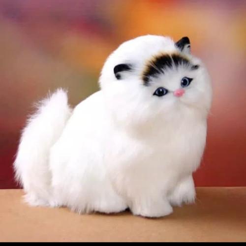 Foto Produk Boneka import kucing simulasi bisa meong - putih hitam dari AUTO KID II