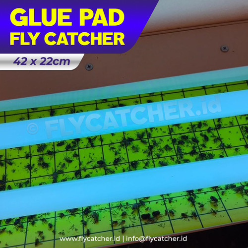 Foto Produk Lem Lalat / Glue Pad / Glue Board for Fly Catcher Size 42x22cm dari BIOTROOPS