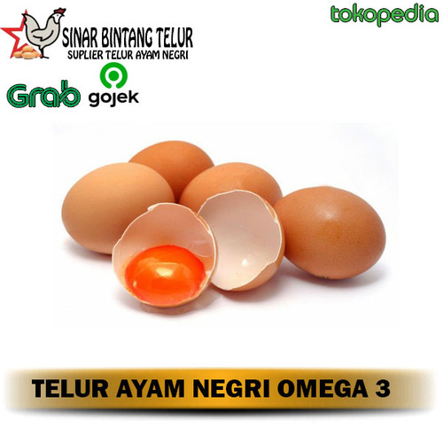 Foto Produk TELUR NEGRI OMEGA 3 /KG dari SINAR BINTANG TELUR