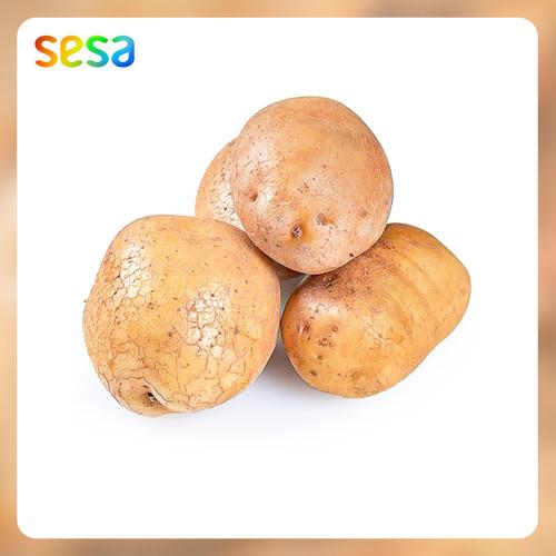 Foto Produk Kentang Organik 500g dari SESA Official