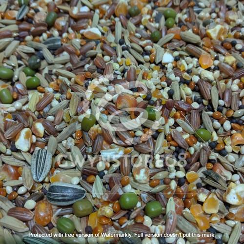 Foto Produk Makanan hamster 1kg harga termurah dari Gwynstore08