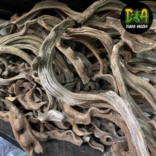 Foto Produk Kayu Frankenstein dari Dunia Anura