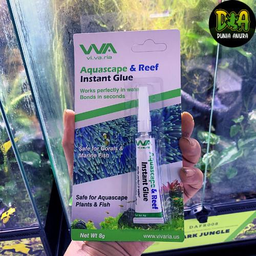 Foto Produk Lem moss dan tanaman vivarium/terrarium dari Dunia Anura