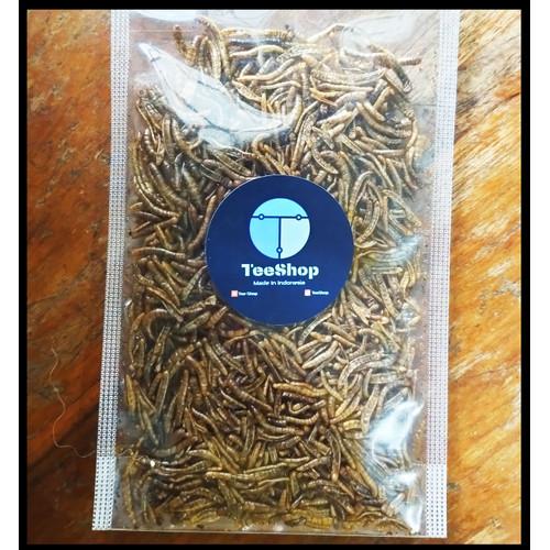 Foto Produk MAKANAN SUGAR GLIDER - ULAT HONGKONG KERING - MAKANAN HAMSTER - Small 8 gram dari JAYA BERKAH QUEEN