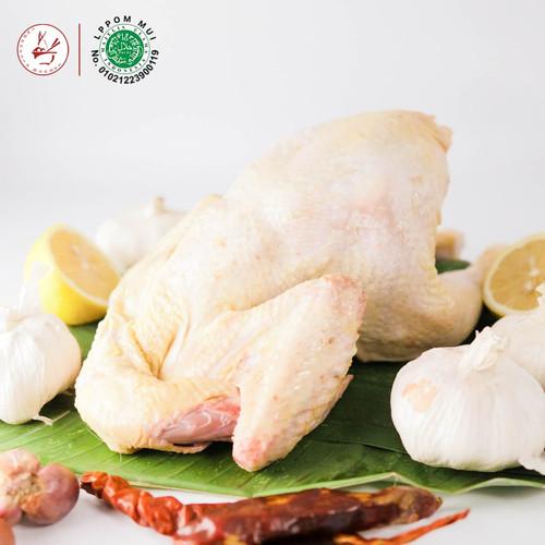 Foto Produk Ayam Broiler Probiotik Besar - Karkas Halal - ± 1.0 Kg dari Warung INO