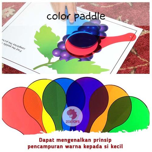 Foto Produk Zoetoys Learning Resources 'Color Paddle' - Tidak Ada Merk dari zoetoys