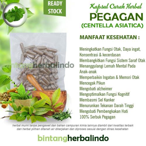 Foto Produk Kapsul Curah Herbal PEGAGAN Suplemen Otak Stress Pikun 100 capsul dari bintangherbalindo