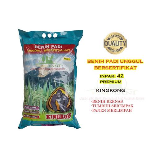 Foto Produk Benih Padi Inpari 42 Jumbo Premium Kingkong 5kg dari Purotani.ID