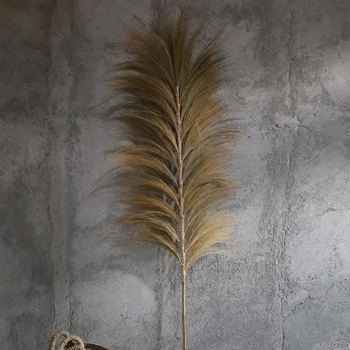 Foto Produk Home Decor Rayung Kering Panjang 200cm, Bunga Kering Rayung. - natural dari kreasikayu