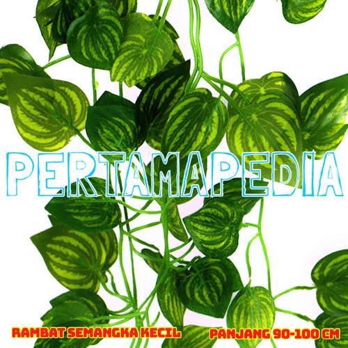 Foto Produk Daun Rambat Plastik/ Daun Rambat Artificial/ Semangka K90 - SEMANGKAKECIL90 dari PERTAMA PEDIA