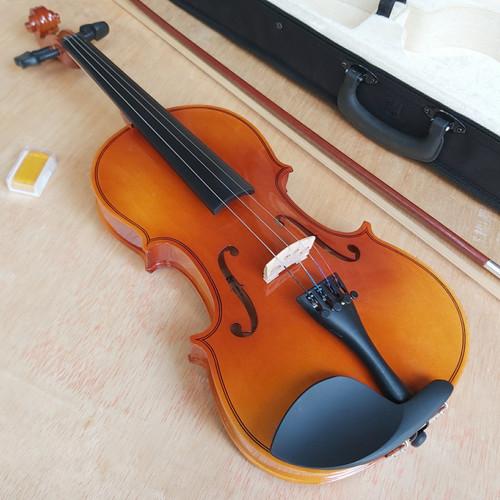 Foto Produk Biola 4/4 - Glossy dari bayaw musik