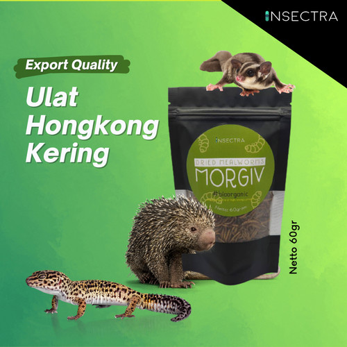Foto Produk Ulat Hongkong Kering (60gram) dari INSECTRA