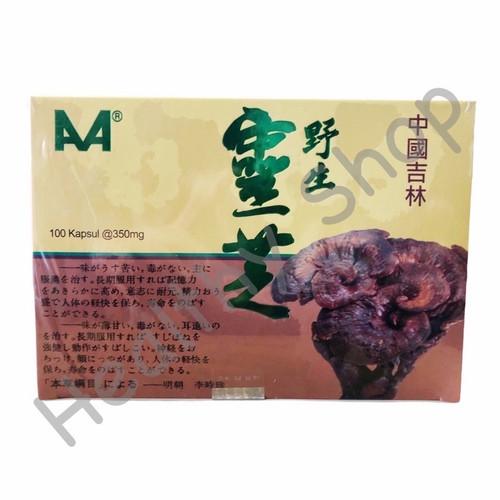 Foto Produk Jilin China Wild Lingzhi dari Healthy Shop 2