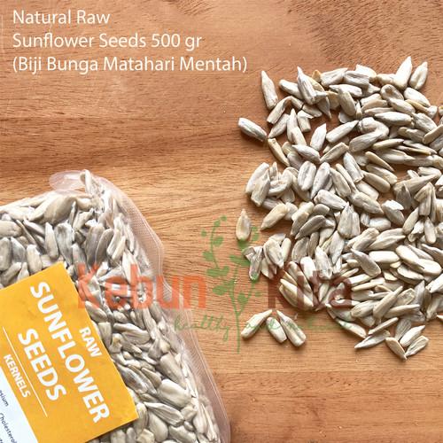 Foto Produk Sunflower Seeds 500gr ( Biji Bunga Matahari ) dari Kebun Kita