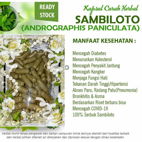 Foto Produk Serbuk Daun Sambiloto (Bentuk Kapsul isi 100 Pcs)Obat herbal murah dari Shafa Olshop007